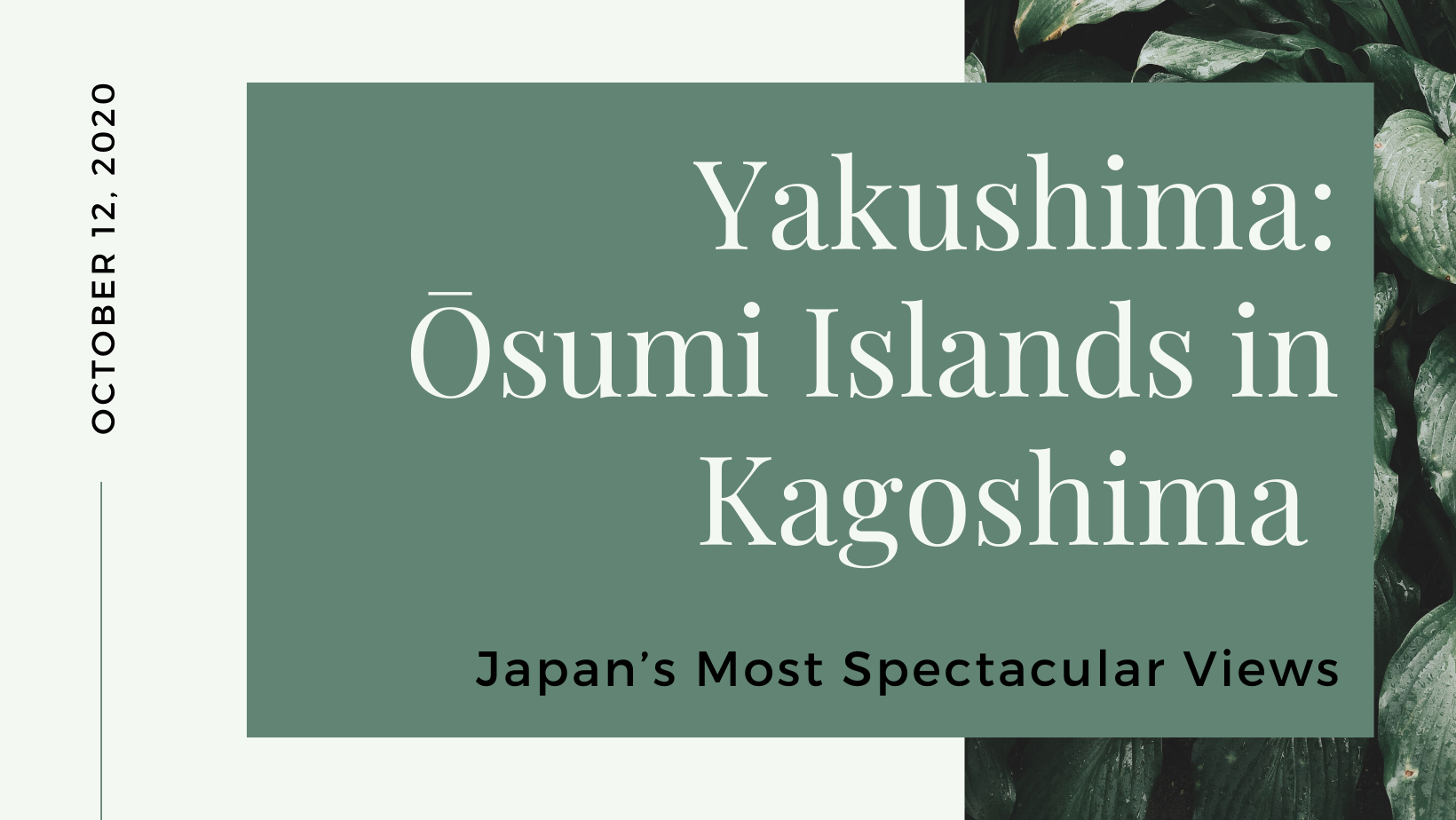 Yakushima: Ōsumi Islands in Kagoshima – Japan's Most Spectacular Views