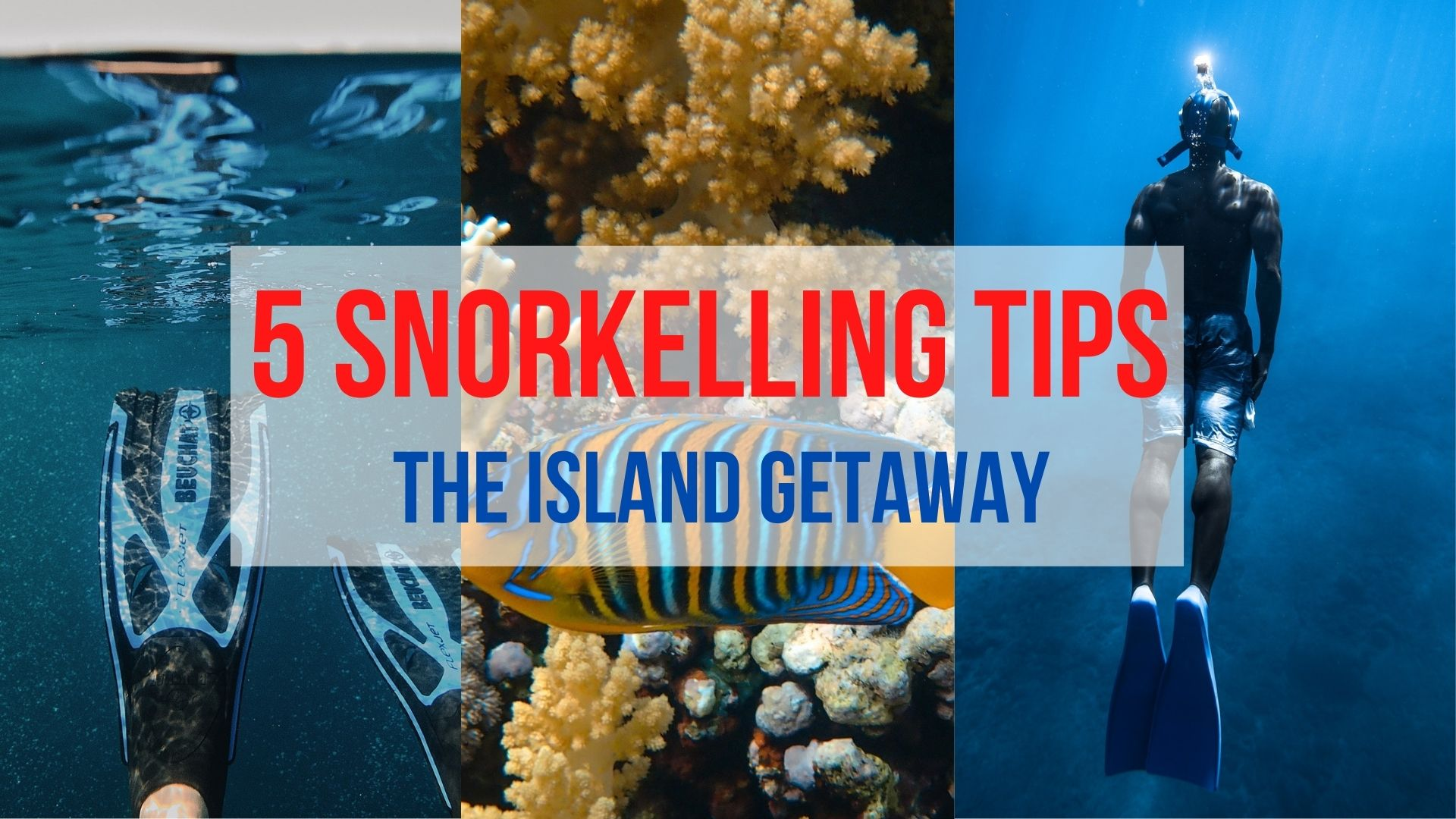 5 Basic Practice for Those First Time Snorkelling