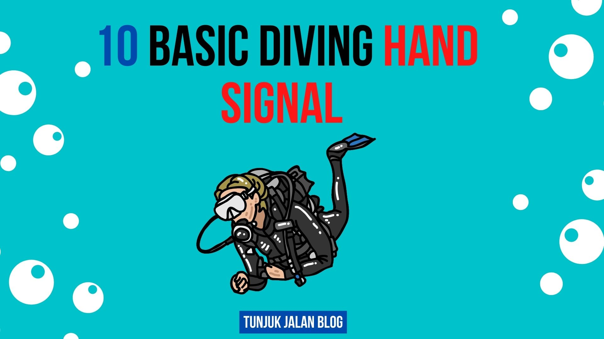 10 Basic Diving Hand Signals – Diving Survival